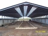 Реконструкция молочной фермы