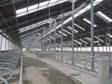 Строительство молочной фермы в п.Маяковское  фото 2