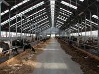 Снимок сельскохозяйственного здания в Гусевском районе